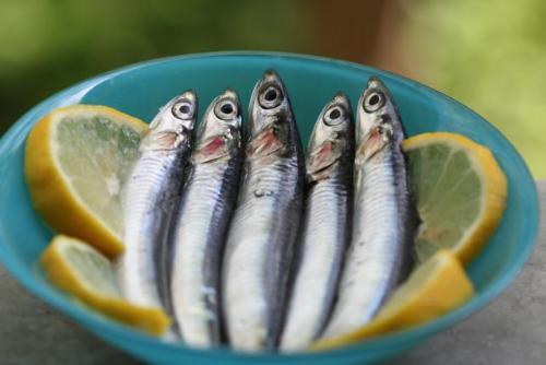 Cá cơm - Những loại cá giàu Omega 3 nhất có thể giúp giảm nguy cơ ung thư vú