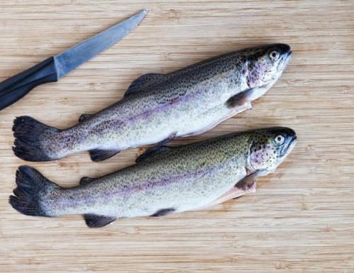 Cá hồi hoa - Những loại cá giàu Omega 3 nhất có thể giúp giảm nguy cơ ung thư vú