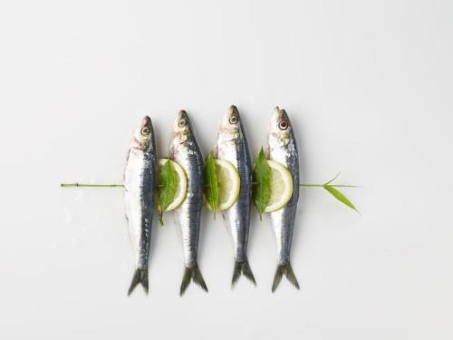 Cá mòi - Những loại cá giàu Omega 3 nhất có thể giúp giảm nguy cơ ung thư vú